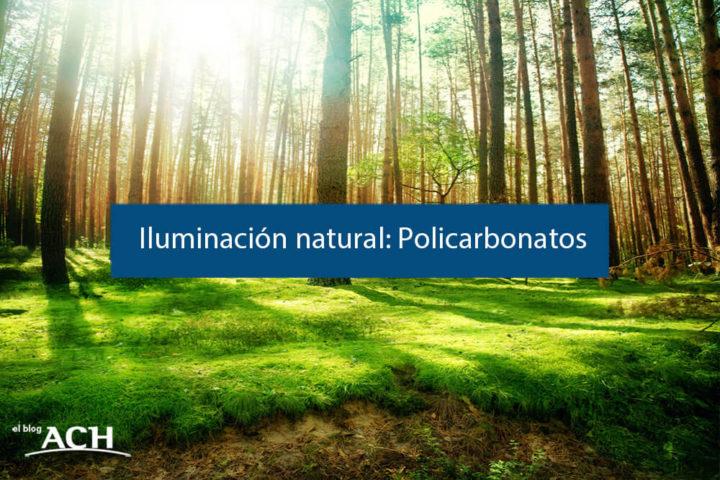 Paneles de policarbonato para una iluminación 100% natural.