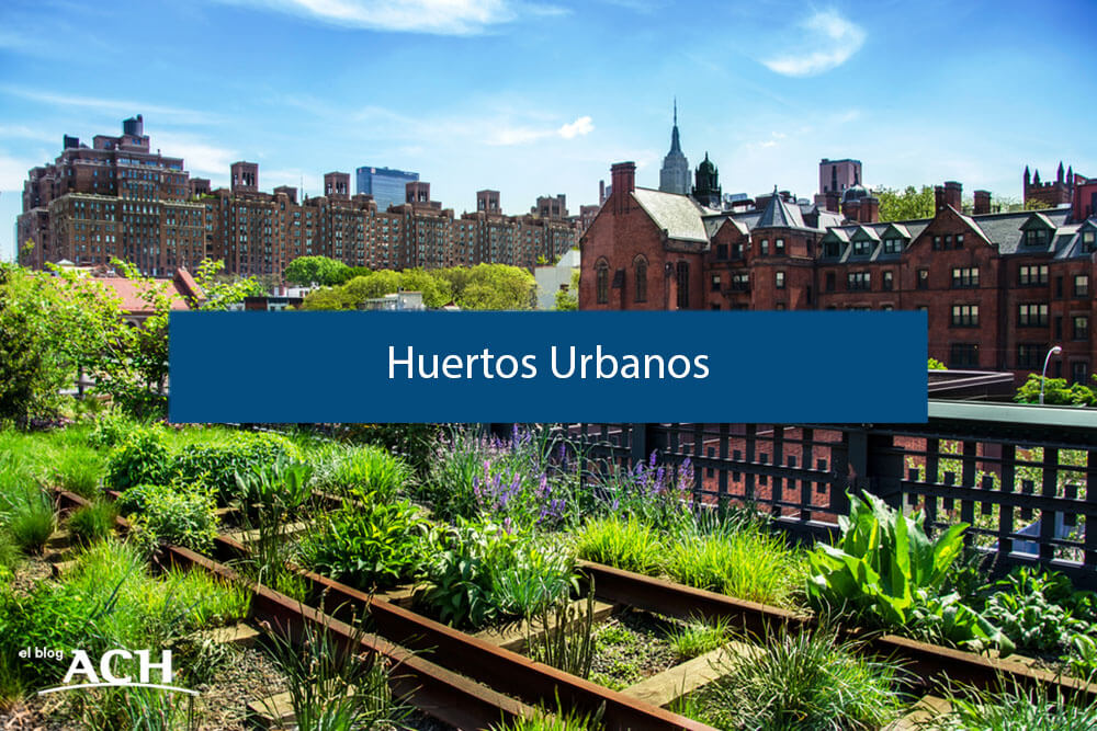 sostenibilidad en la ciudad