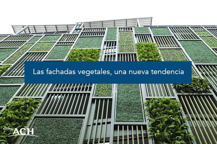 Las fachadas vegetales, una nueva tendencia
